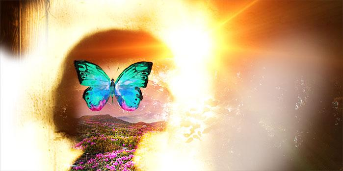 """A Powerful """"Dream Work"""" Practice for Uncovering Your Shadow and Your Gifts"""